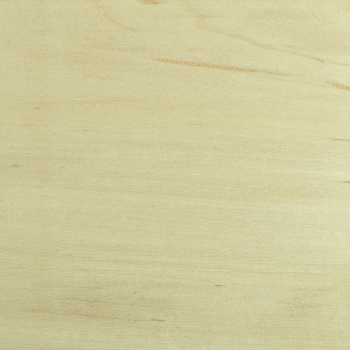 Basswood Wood (close up of wood grain)