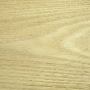 Elm Wood (close up of wood grain)