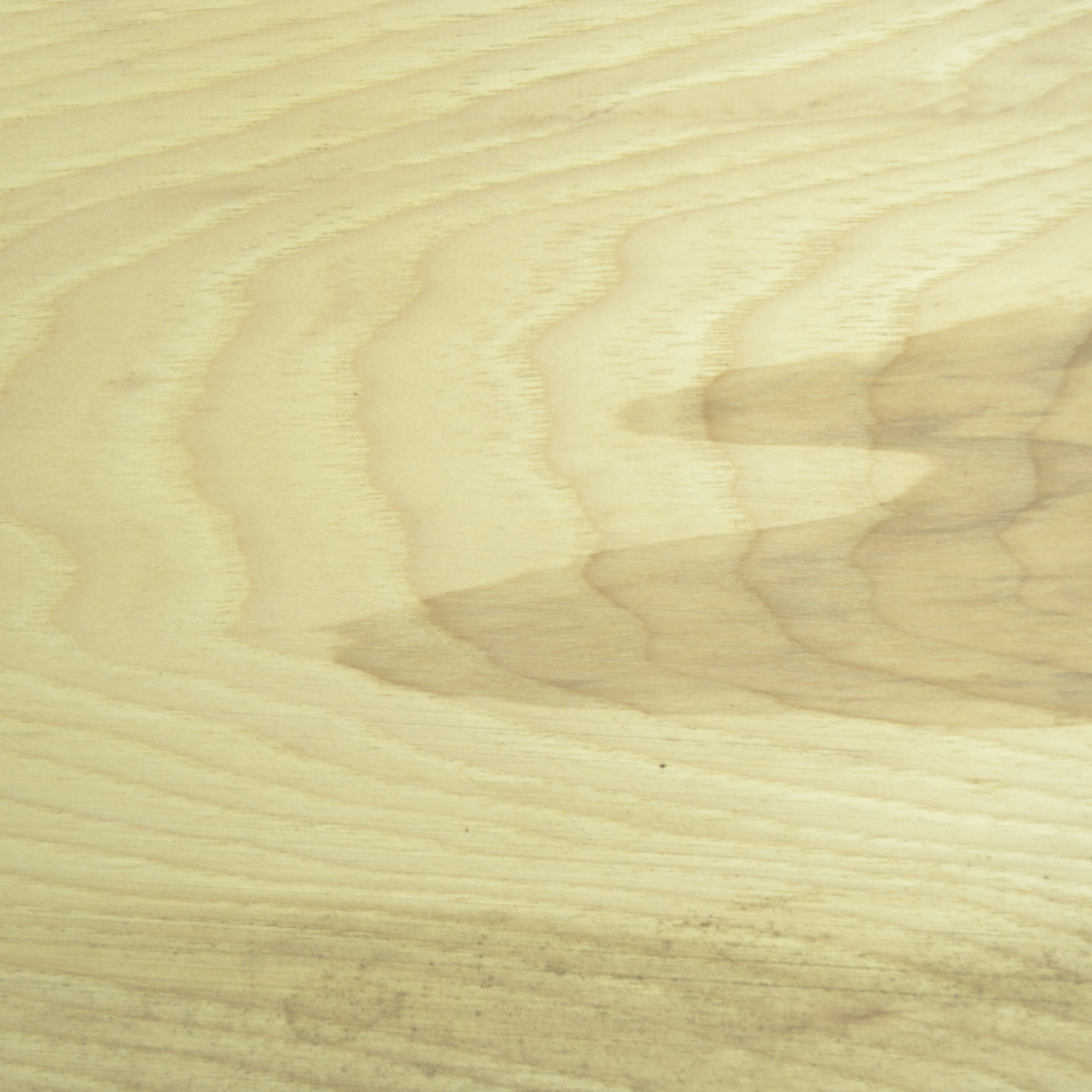 Hickory Wood (close up of wood grain)