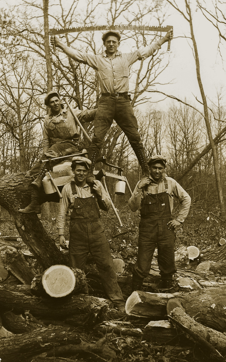 historic forestry photo of lumberjacks with Two-Man Crosscut Saw in had above head