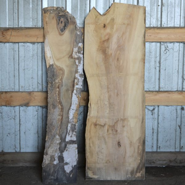 Live Edge Sycamore Slab for sale in Iowa