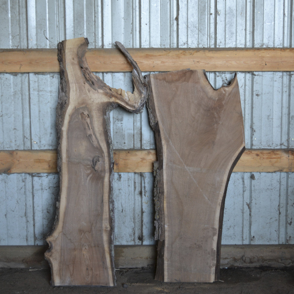 Live Edge Walnut Slab for sale in Iowa