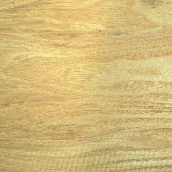 Locust Wood (close up of wood grain)
